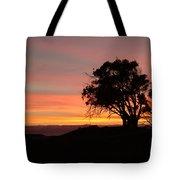 California Tree At Sunset Tote Bag