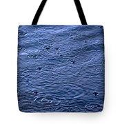 California's Prayer Tote Bag