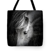 Call Me The Wind Tote Bag by Shane Holsclaw