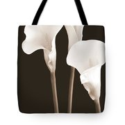 Calla Lilies In Triplicate In Sepia Tote Bag