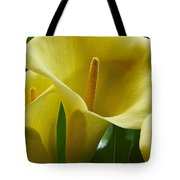 Calla Lily 1 Tote Bag