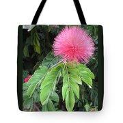 Calliandra Blossom Tote Bag