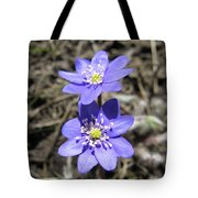 Calling Spring. Two Violets Tote Bag