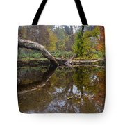 Calm On Big Chico Creek Tote Bag