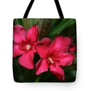 Calpoly Flowers By Diana Sainz Tote Bag