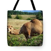 Camel In The Berry Bush Tote Bag