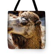Camel Loose Lip Tote Bag