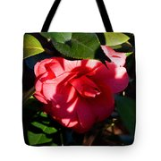 Camelia In The Shadows Tote Bag