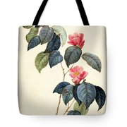 Camellia Japonica Tote Bag by Pierre Joseph Redoute