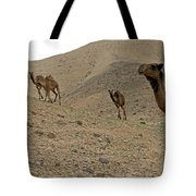 Camels At The Israel Desert -2 Tote Bag