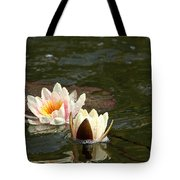 Cameo And Friend Tote Bag