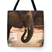 Camouflaged Elephant Tote Bag