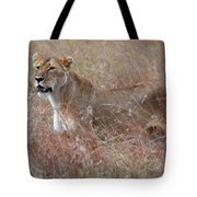 Camouflaged Female Lion In Grass Tote Bag