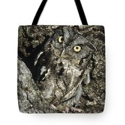 Camouflaged Screech Owl Tote Bag
