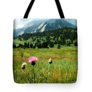 Chautauqua Wildflowers Boulder Tote Bag