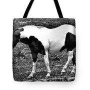 Camp Horse Tote Bag