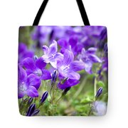 Campanula Portenschlagiana Blue Bell Flowers Tote Bag