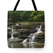 Campbell Falls 5 Tote Bag