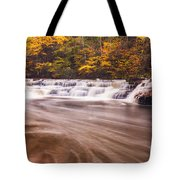 Campbell Falls In Autumn Tote Bag