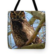 Campus Owl Tote Bag