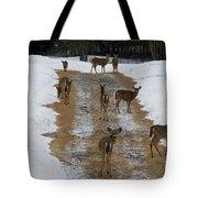 Can Deer Read Tote Bag