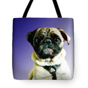 Can I Come Too Tote Bag