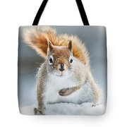 Can I Have Some More? Tote Bag