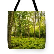 Canaan Path Tote Bag