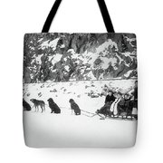 Canada Dog Sled, C1910 Tote Bag