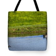 Canada Geese And Goslings Tote Bag