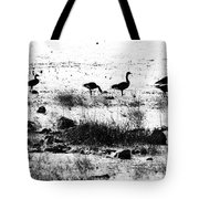 Canada Geese In Black And White Tote Bag