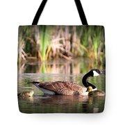 Canada Goose - Babies  8237-16x10 Tote Bag