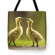Canada Goose Babies Tote Bag