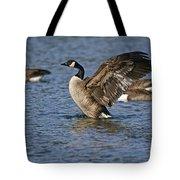 Canada Goose Pictures 165 Tote Bag
