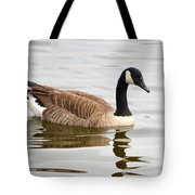 Canada Goose Reflecting In Calm Waters Tote Bag