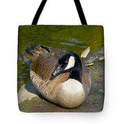 Canada Goose Sitting Pretty Tote Bag