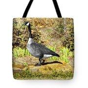 Canadaian Goose Tote Bag