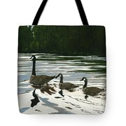 Canadas On Wilson Lake Nc Tote Bag