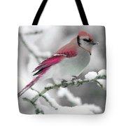 Canadian Cardinal Tote Bag