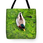 Canadian Duck Tote Bag