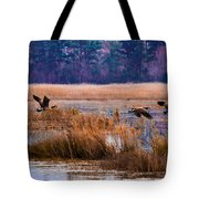 Canadian Flight 4 Tote Bag