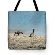 Canadian Geese 2 Tote Bag