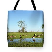 Canadian Geese Community In West Haven Tote Bag