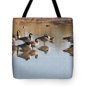 Canadian Geese Stop Over Tote Bag
