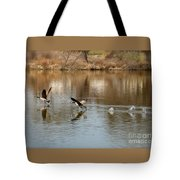 Canadian Geese Takeoff Tote Bag