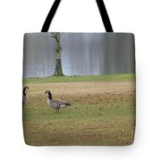 Canadian Geese Tourists Tote Bag