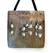 Canadian Geese Watching Tote Bag
