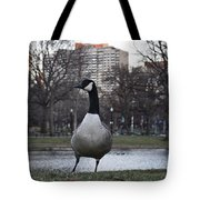 Canadian Goose At Boston Public Garden Tote Bag