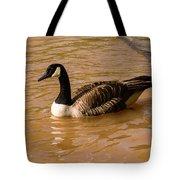Canadian Goose In On Golden Pond Tote Bag