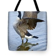 Canadian Goose Stretching Tote Bag